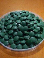 SPIRULINA 80 Tablet Rich Favorite Food for Fish and Crystal Red Shrimp (CRS)