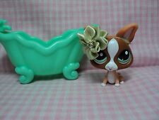Discontinued Rare Authentic LPS Chihuahua With Handmade Bow Accessories