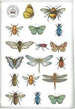 ROYAL BOTANIC GARDENS KEW Bug Study COTTON TEA TOWEL