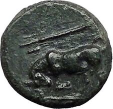KRANNON in THESSALY 350BC Horseman Bull Trident Ancient Greek Coin i55654