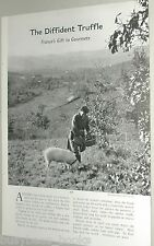 1956 magazine photo article, the TRUFFLE, French pig sniffers, gourmet