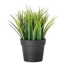 "IKEA mini artificial potted plant wheat grass 8"" lifelike nature herb deco Fejka"