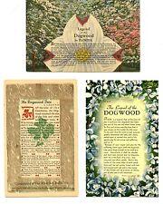 Legend of the Dogwood-Virginia Flower-Set-Lot of 7 Different Vintage Postcards