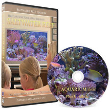 ** Aquarium For Your Home : Saltwater Reef **  DVD #9