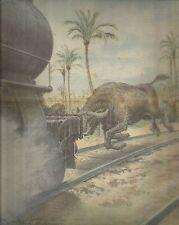 K0222 Egitto - Bufalo causa un disastro ferroviario - Stampa antica