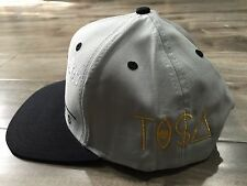 VINTAGE LA LOS ANGELES RAIDERS GOLD TISA GOLD SNAPBACK TI$A SCRIPT NEW GRAY