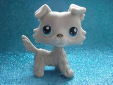100% ORIGINAL Littlest Pet Shop Collie DOG # 363 . Shipping with Polish