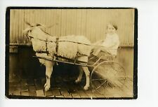 Cute Girl in Billy Goat Carriage RPPC-Sized Miniature Americana Photo 1934