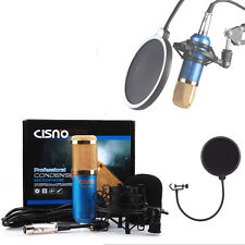 BM800 Blue Condenser Microphone Mic + Shock Mount Pop Filter Sound Recording Kit