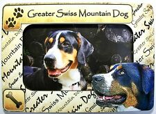 Greater Swiss Mountain Picture Dog Frame Fridge Magnet