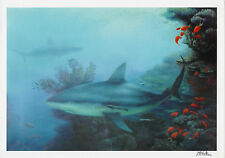 M. HORTON Signed 12x8 ORIGINAL Shark Art Print COA