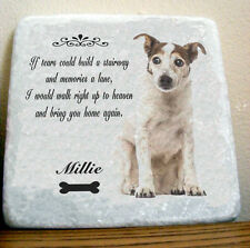 Personalizadas Foto Pet simpatía o Recuerdo Regalo SIGN pared arte tiles10cm