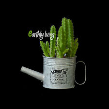 Small Plant Watering Can Ebay