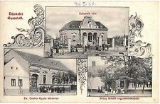 "Romania Banat Timis 1914 Cenei Csene,""Uzbasich""villa,medical office,village shop"