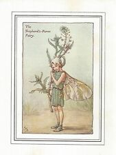 FLOWER FAIRIES VINTAGE PRINT : THE SHEPHERDS PURSE FAIRY