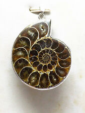 Ammonite Fossil Snail Pendant Bead yellow color 1006