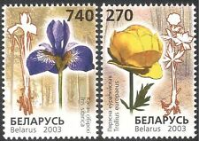 Belarus 2003 Endangered Flowers/Iris/Nature/Conservation 2v set (n13173)
