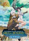 DVD Danjon ni Deai o Motomeru no wa Machigatteiru Daro ka / DanMachi Tv-1-13end