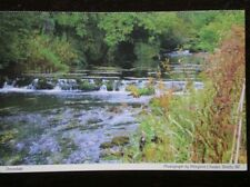 POSTCARD B38-5 DERBYSHIRE DOVEDALE - GREAT VIEW OF THE RIVER