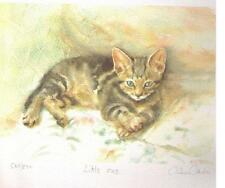 """GILLIAN CAROLAN ~ """"LITTLE ONE"""" - /GREY and WHITE CAT ~Signed Limited Edition"""