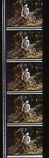 1939 The Wizard of Oz 35mm Film Cell strip very Rare we132
