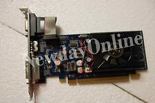 Dell GeForce 310 PCIe x16 Graphics Video Card 512MB DDR3 VGA DVI HDMI HDCP FTGGG