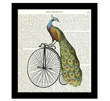 Peacock on a Bicycle 8 x 10 Dictionary Art Print Collage Book Page Home Decor