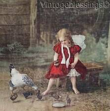 Beautiful! 1899 ANTIQUE Girl with Chickens Lithograph on Canvas Chicks