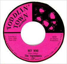 THE INGREDIENTS 45 Hey Who /Please Don't Leave Me TODDLIN TOWN Rec HEAR A+ '66