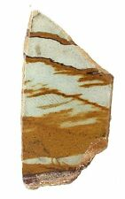 83.1 Gram Owyhee Picture Jasper Cab Cabochon Slab Gem Gemstone Rough PJS4