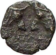 Pergamon in Asia Minor 300BC Very rare  Greek Coin Athena Cult Bulls  i28077
