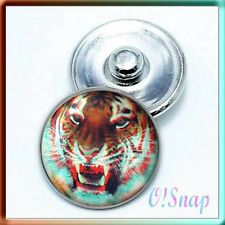 NEW! Animal NEON TIGER Ginger Snap Button Charm (Cart ANY 4 items, 2 w/be FREE)