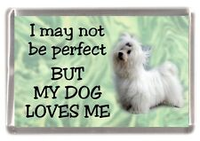 "Maltese Terrier Dog Fridge Magnet ""I may not be perfect ........"" by Starprint"