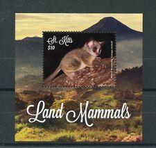 St Kitts 2016 MNH Land Mammals Mohol Bushbaby 1v S/S Wild Animals Stamps