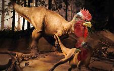 Encadrée Crazy Print-T-REX Dinosaures avec têtes de poulet (Parc Jurassique photo)