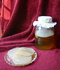 XL Organic Kombucha Scoby Starter + Tea Enzymes Probiotic fed on org Cane Sugar