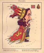 Mapa Galés Reproducción Color Viejo Antiguo Vintage Atlas Geográfico Divertido