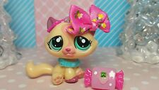 Littlest Pet Shop Katze #1919 Tabby Cat collar  Rare ☆ kitty ☆♡ LPS HTF