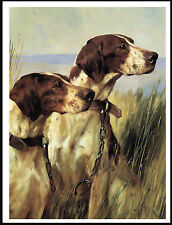POINTER TWO DOGS HEAD STUDY LOVELY IMAGE DOG PRINT POSTER