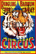 RINGLING BROS CIRCUS TIGER BUILDING SIGN DECAL 3X2  MORE SIZES AVAIL