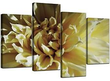 Large Cream Yellow Floral Canvas Flowers Wall Art XL Pictures Set 4104