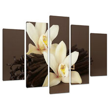 Set of 5 Piece Large Brown Cream Floral Canvas Wall Art Pictures  5121