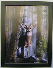Big Buck Antlers Hunting Framed Country Pictures Prints Deer Pictures