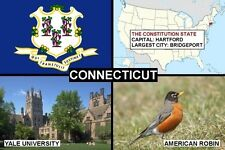 SOUVENIR FRIDGE MAGNET of THE STATE OF CONNECTICUT USA