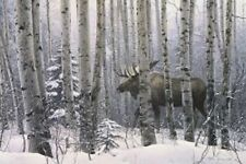 Lyman Walk in the Woods print moose hunting poster 26x36 aspens wildlife bull