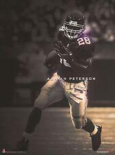 NFL Minnesota Vikings Adrian Peterson 2000 Yard Man 24x18 Football Poster