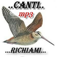 RICHIAMO PER UCCELLI IN MP3  da 2,51 GB DI RICHIAMI !!!