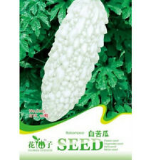 Rare White Balsam Pear Seed Bitter Melon Organic Vegetable 1 Pack 10 Seeds