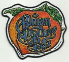 ALLMAN BROTHERS peach 2014 shaped - EMBROIDERED - IRON/SEW ON PATCH import