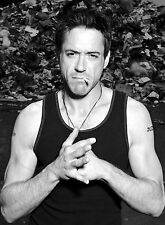 PHOTO ROBERT DOWNEY JR  JR  /11X15 CM #8